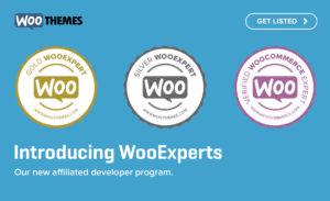 wooexpert tiers
